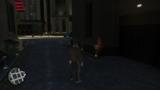 Rata voladora Nº 133