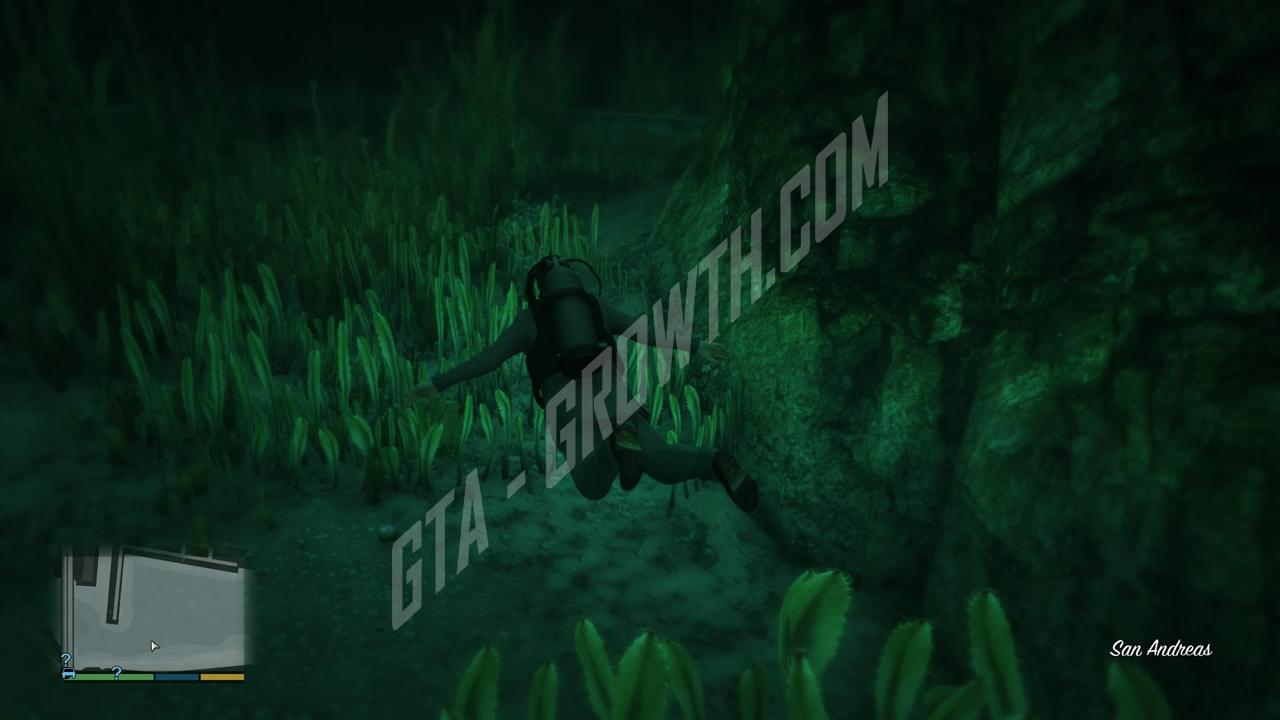 Peyotes de GTA V · GTA-Growth